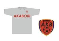 _akb2_2